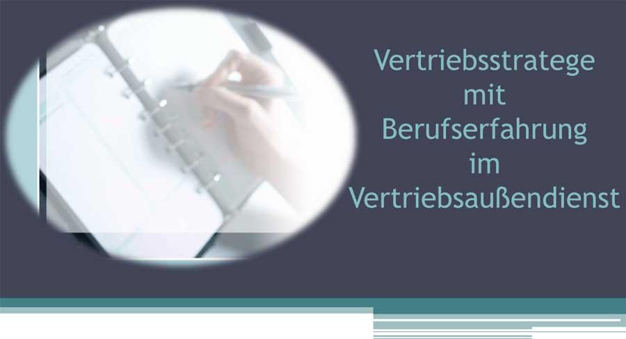 Vertriebsstrategen - Online-Bewerbung - Banner