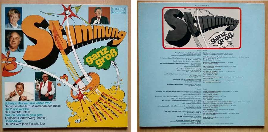 Stimmungsmusik, Doppel-Schallplatte, Vinylliebhaber
